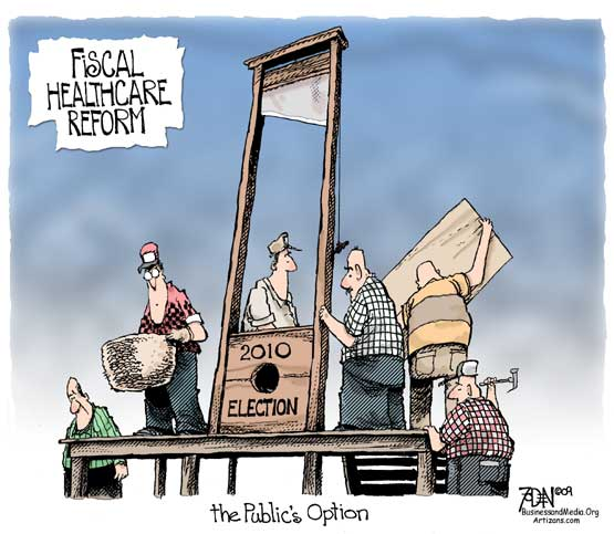 healthcare reform the public option