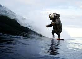 GOP wave
